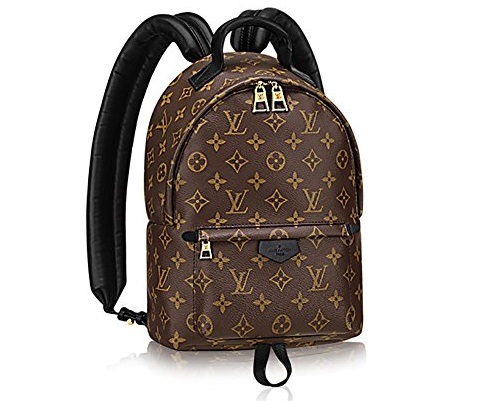 Monogram Canvas Palm Springs Backpack PM Handbag -Elegance, Charm and Style: Louis Vuitton