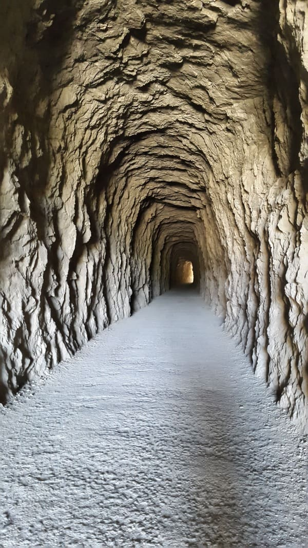 Railrod Tunnel - Natural Reserve Foz de Lumbier's fluvial canyon