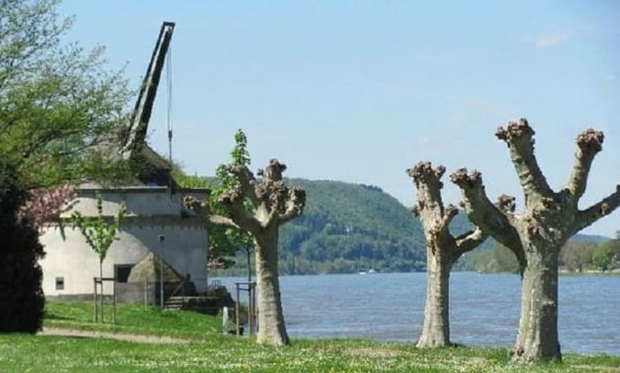 Medieval Treadwheel Cranes in Germany - Trier- Andernach alter-krahnen