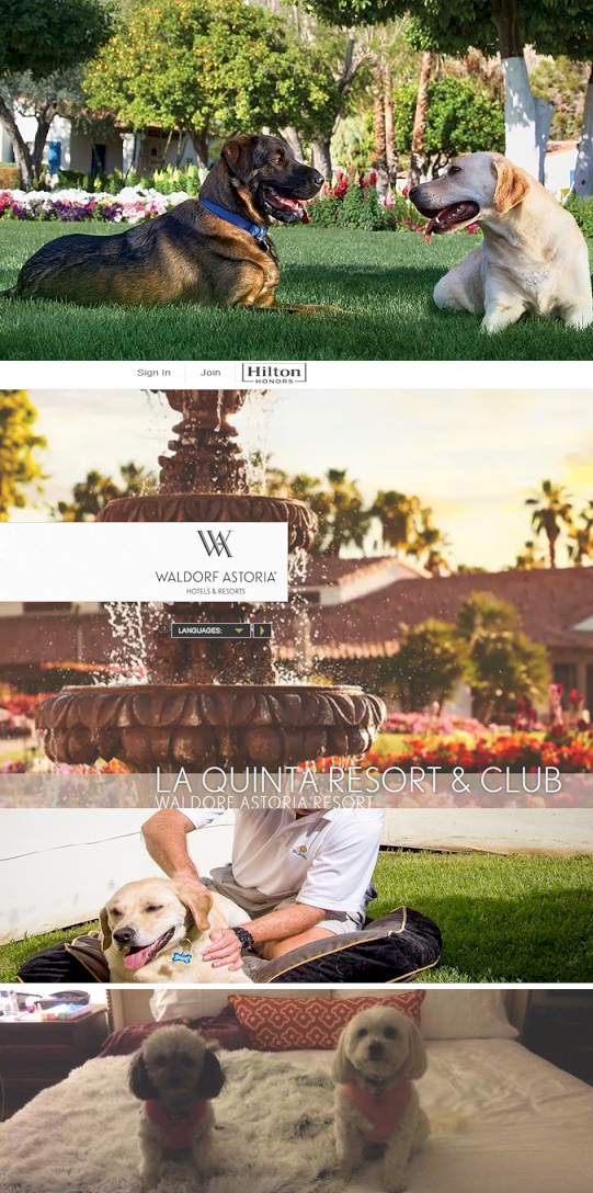 La Quinta resort pet Hotel - And how do you travel with Pets?