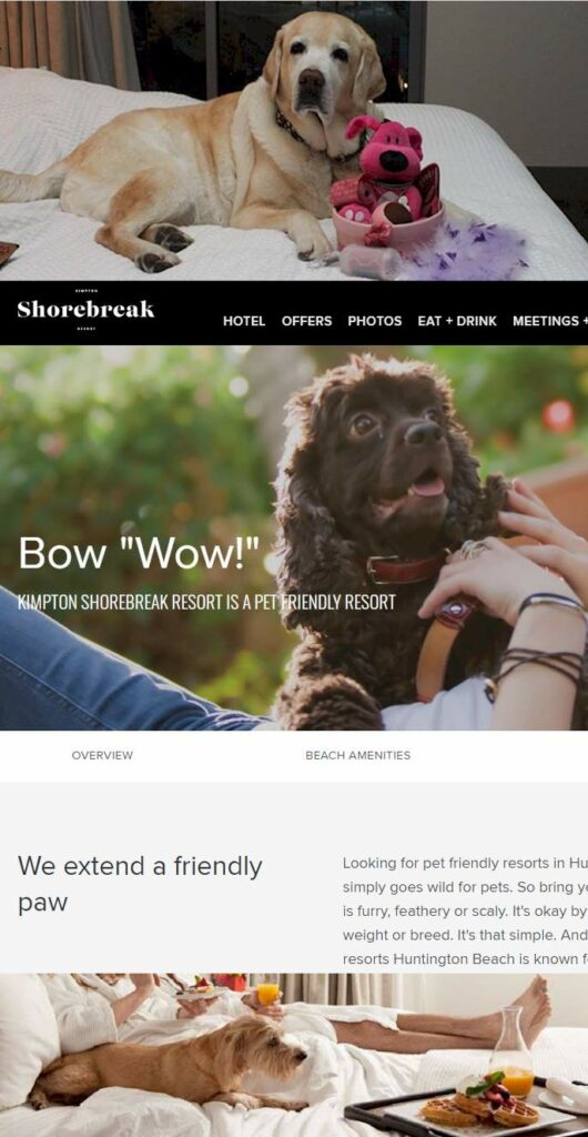 Shore Break Pet Friendly Hotel - How Many People Travel with Pets?