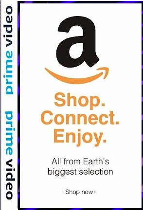 Amazon Prine Video Logo
