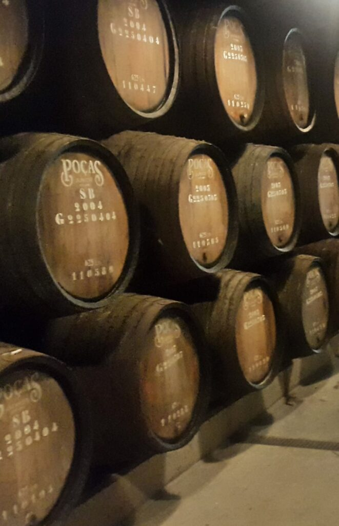 Porto Winery Selection - Caves Poças