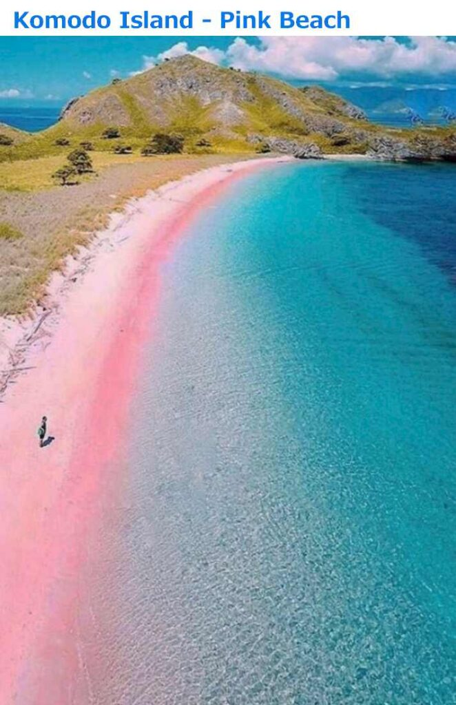Pantai Merah Beach - Komodo, Indonesia - Best Pink Beach