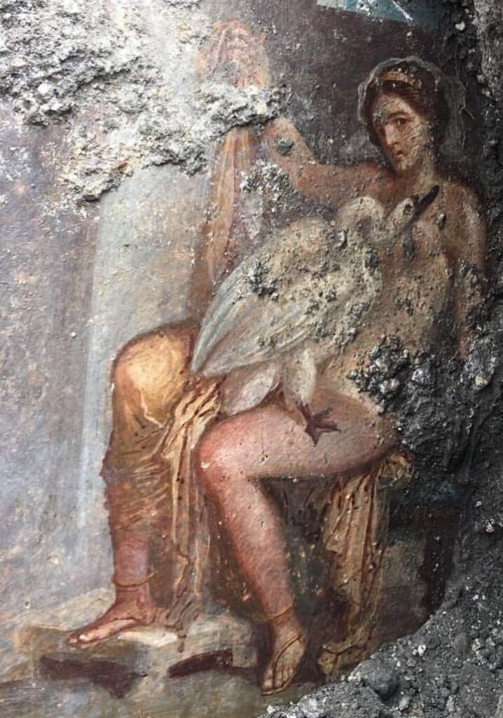 Leda and the Swan in Pompeii Leda and the Swan in Pompeii - Leda and the Swan in Pompeii City A group of archaeologists work in the Pompeii archaeological park in southern Italy. There was a spectacular erotic fresco in very good condition. It is the Greek myth of seduction, embodied in Leda and the swan. It is a unique and exceptional find, said the director of the #archaeological park, Massimo Osanna, when announcing the discover #pompeii #eroticy