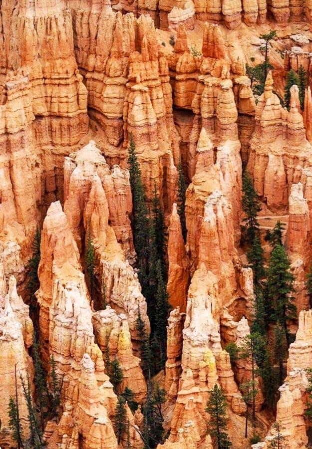 Hoodoos on Bryce Canyon National Park 2020