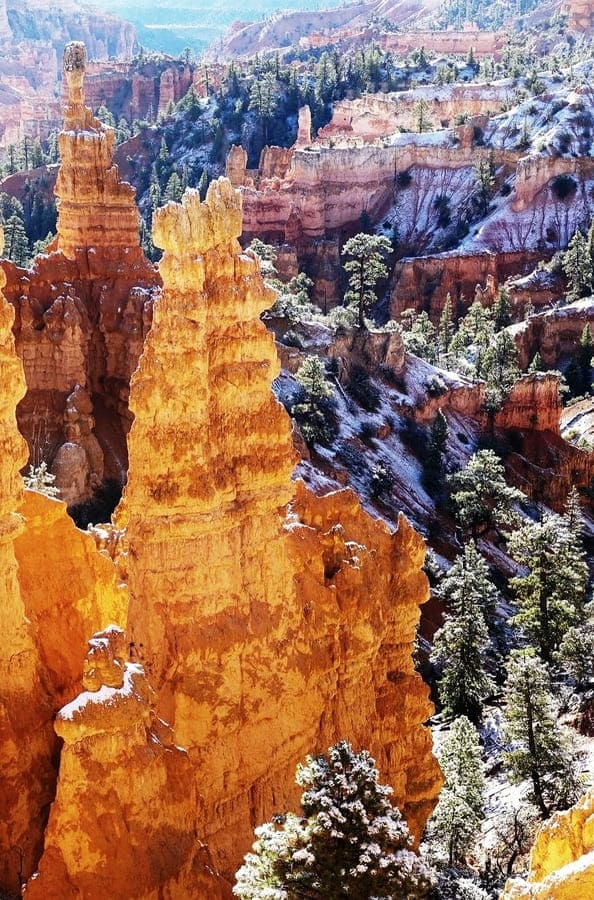 Hoodoos on Bryce Canyon National Park 2020