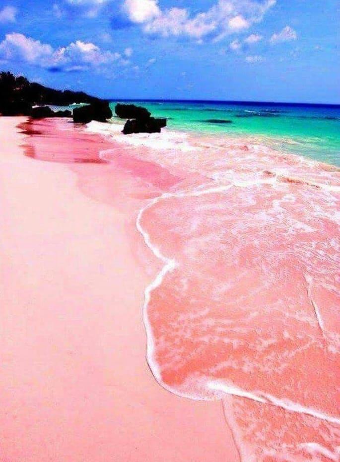 Pink Sands Beach - Bahamas