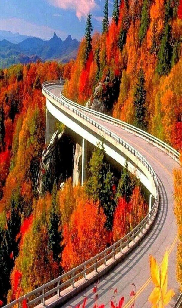 Linn Cove Viaduct - Fall Colors on Blue Ridge Parkway