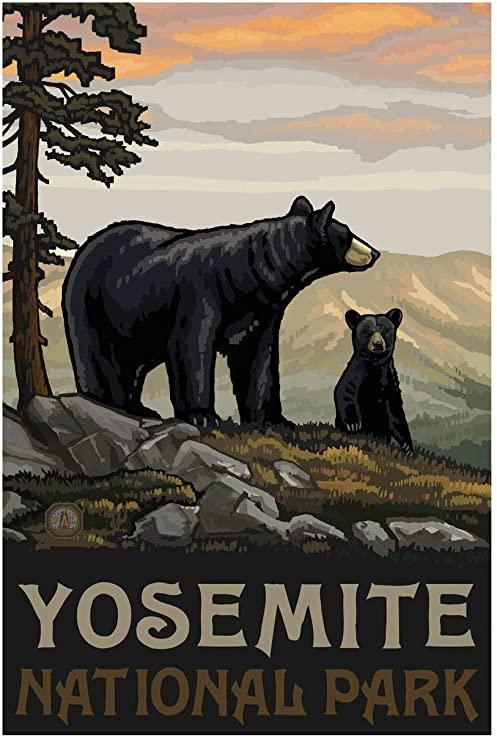 Bears: Hiking Safe on Yosemite - YOSAR