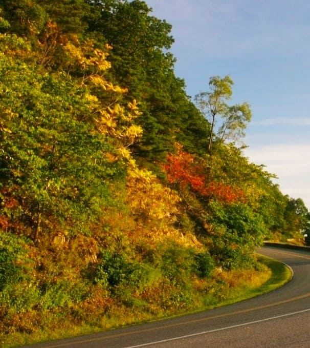 Fall Colors on Shenandoah National Park